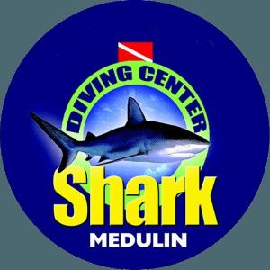 Diving Shark